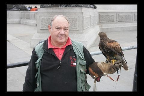 Falconer and Falcon in Trafalgar Square